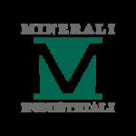 www.mineraliindustriali.it